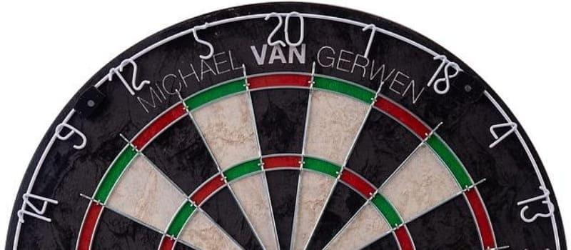 Michael van Gerwen dartbord banner