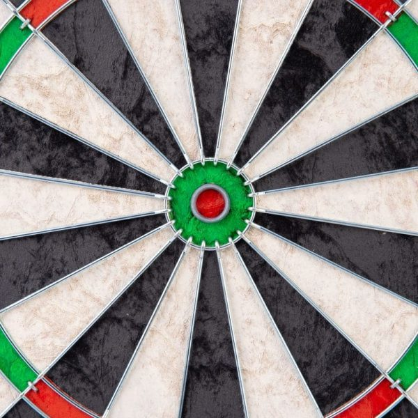 Michael van Gerwen dartbord close up